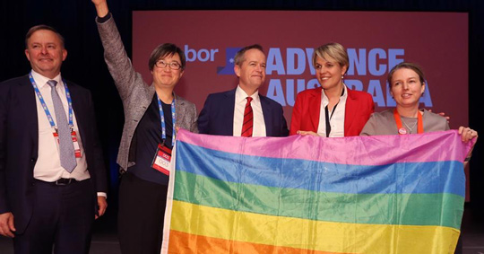 The Labor-Rainbow Alliance committed to Same-Sex Mirage
